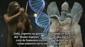 PROTOHISTORIA HUMANOIDES