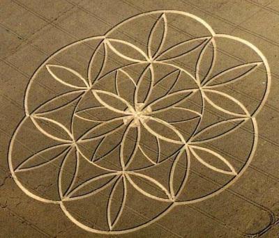 nassim-haramein-fisica-astronomia-geometria-unen-sabiduria-naturaleza-interior-infinita_7_817975.jpg
