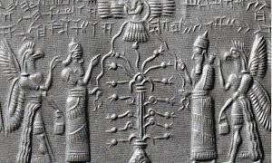 ascension-myths.jpg