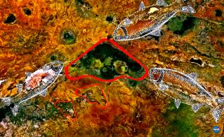 serengueti%2B6.png