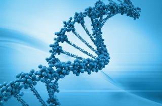 Cadena-ADN.jpg