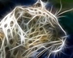 2efc1-3d_big_leopard-1280x1024