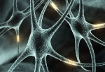 768d1-_neuronas
