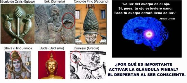 glandula-pineal-en-la-antiguedad.jpg