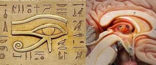 glandula+pineal-ojo+de+ra.jpg